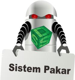 Perbedaan Sistem Pakar dan Sistem Pendukung Keputusan (DSS)