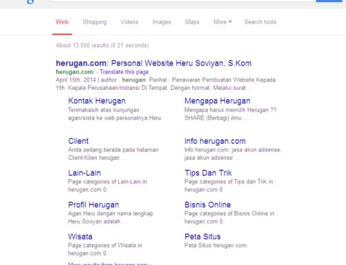Cara Cepat Agar Website/Blog Terindex Di Mesin Pencari