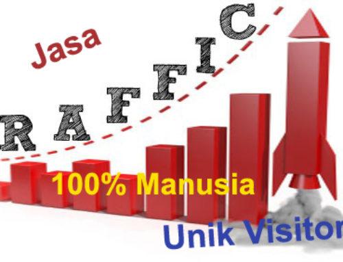 Jasa Trafik Web MURNI MANUSIA 100% Berkualitas Terpercaya