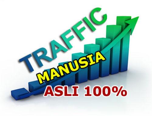 Jasa Visitor (Pengunjung) Website 100% Manusia ASLI Terpercaya