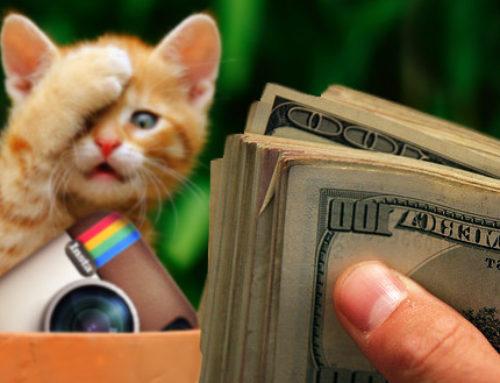 Bisnis Online Menjanjikan : Menghasilkan Uang Dari Instagram